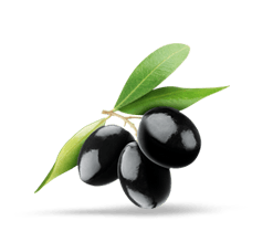 Olives noires détourés